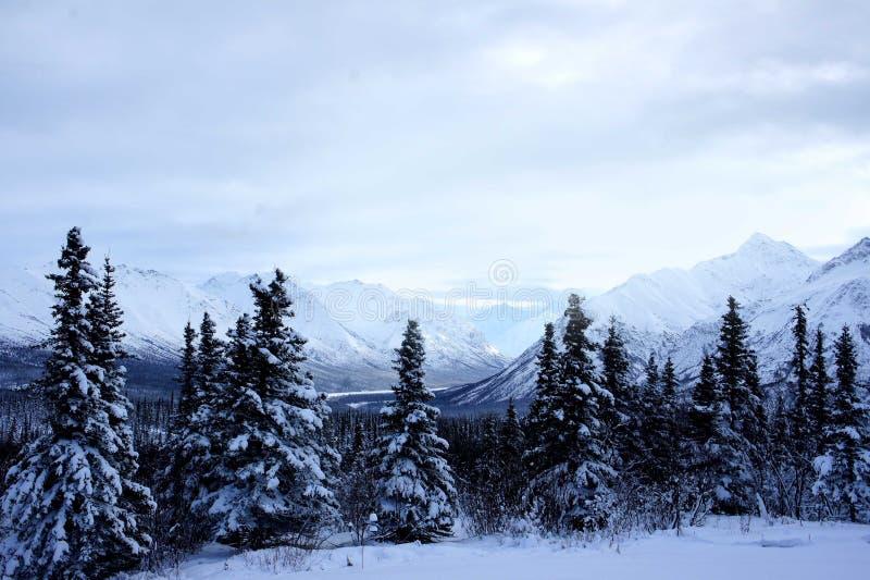 Alaska-Winter-Landschaft lizenzfreies stockbild
