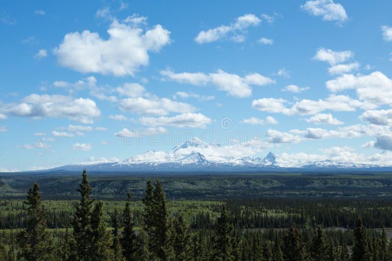 Alaska Wrangell St Elias royaltyfri foto