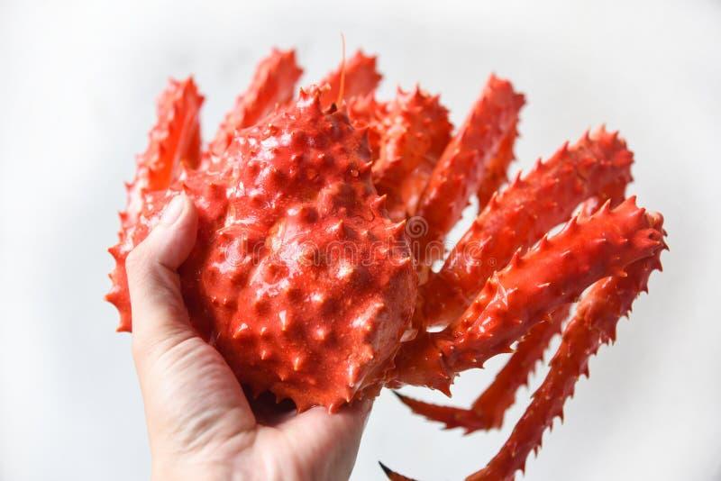 Alaskabo ånga för konung Crab Cooked eller kokt havs- innehav i handen/den röda krabban hokkaido arkivfoton