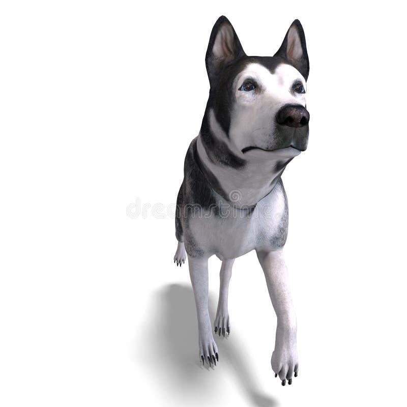 alaskabo för hundmalamute för clipping 3d framförande vektor illustrationer