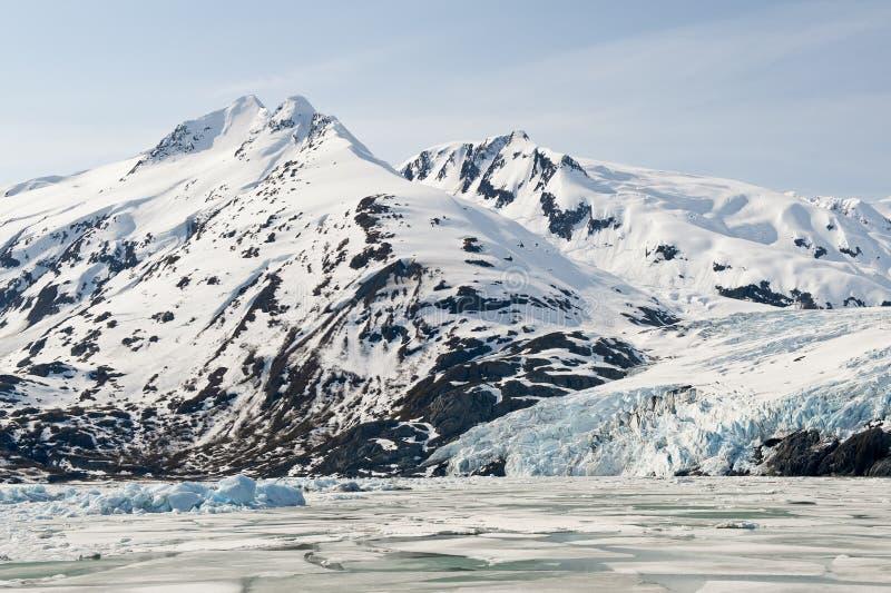 Download Alaskan glacier stock photo. Image of tidewater, undulating - 11405024