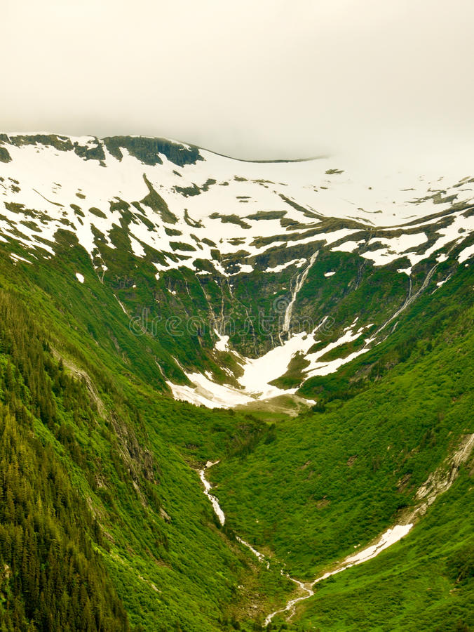 Alaskan Glaciers. Covered with trees stock photography