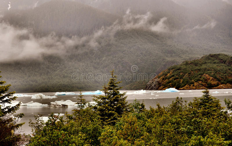 Alaskan Glaciers. With icebergs and trees stock photography