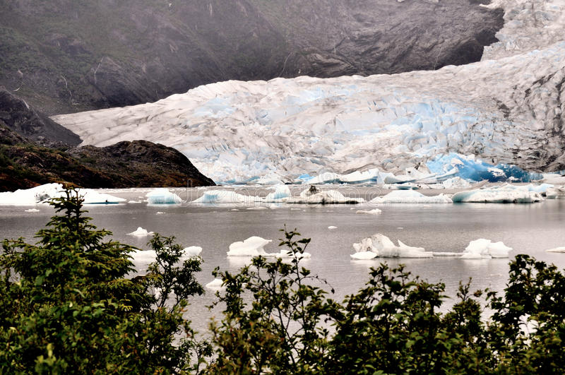 Alaskan Glaciers. With trees in foreground stock image