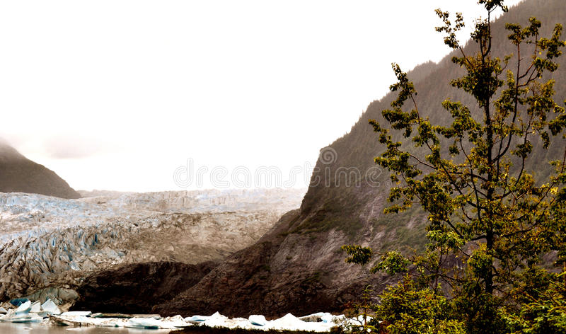 Alaskan Glaciers. With trees and mountains stock image