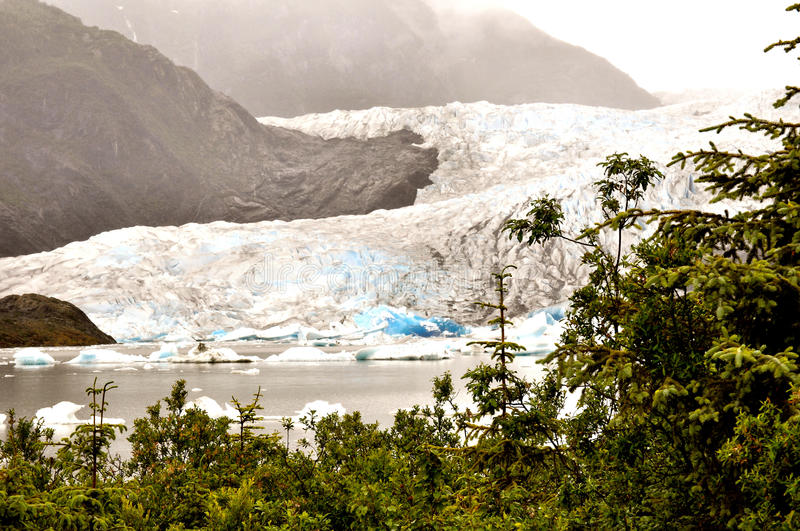 Alaskan Glaciers. With trees on right side royalty free stock images
