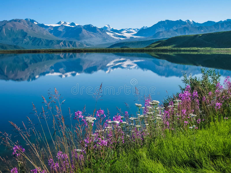 Tanana Valley Alaska stock photos