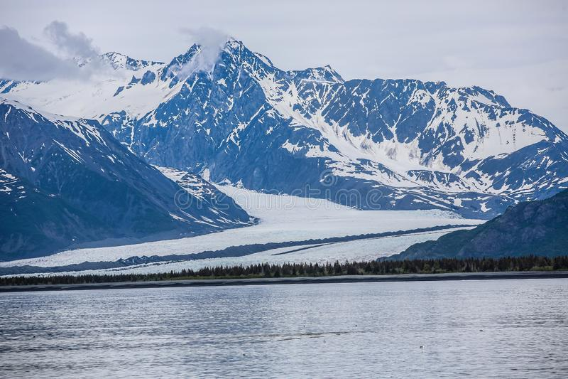 Alaskan national forest glaciers royalty free stock photos