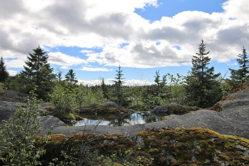 Alaskan landscape with trees reflection in water royalty free stock photo