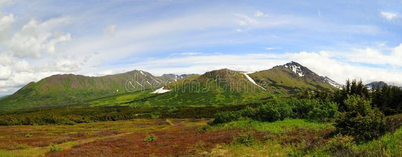 Alaskan mountain panoramic view royalty free stock photo