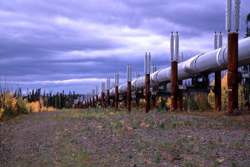 Alaskan Oil Pipeline royalty free stock photos