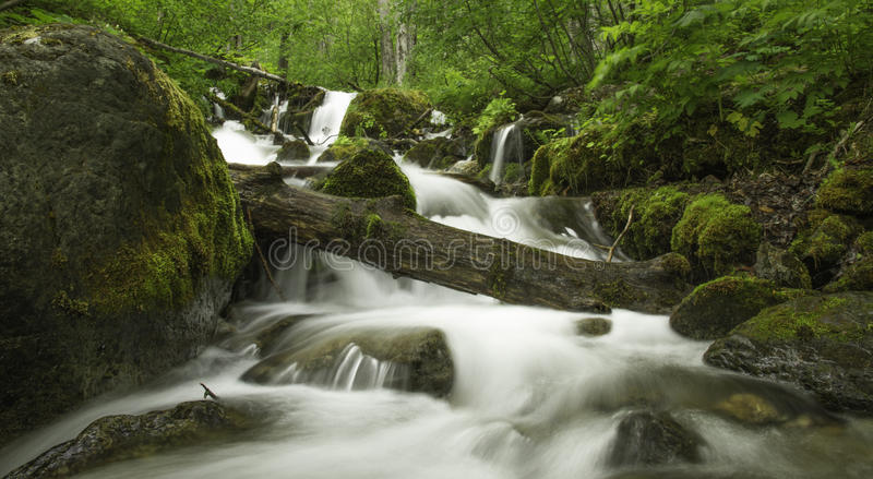 Alaskan Summer Creek royalty free stock photo