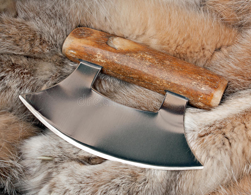Alaskan Ulu Knife. Knife known as an Ulu used by Native Alaskans in the skinning of animals stock image