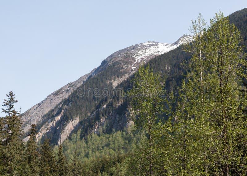 Alaskas Denver Valley stockfotos