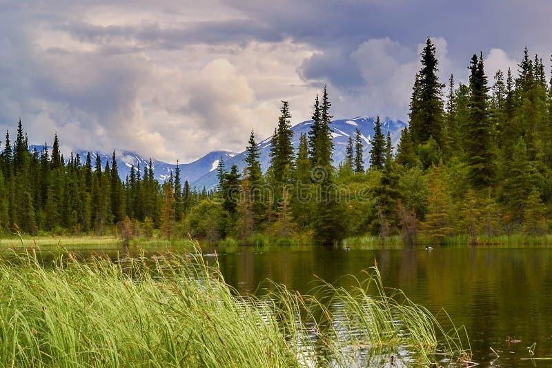 Alaski krajobraz zdjęcie stock