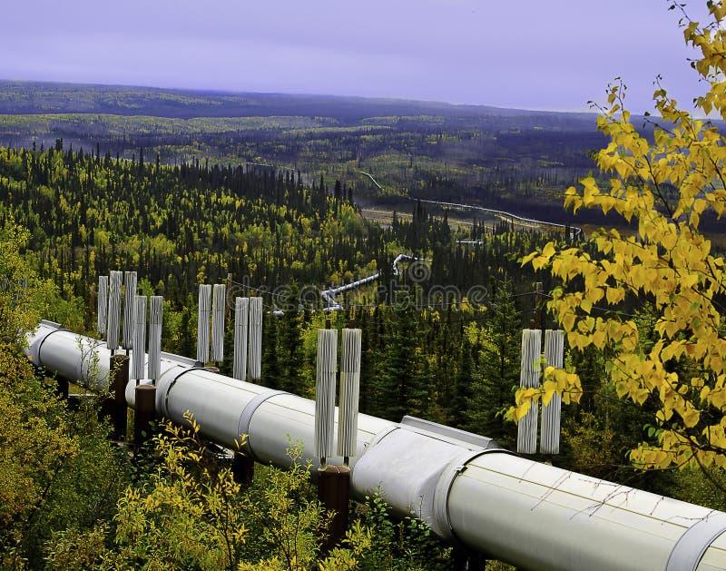 Alaskische Ölpipeline stockfoto