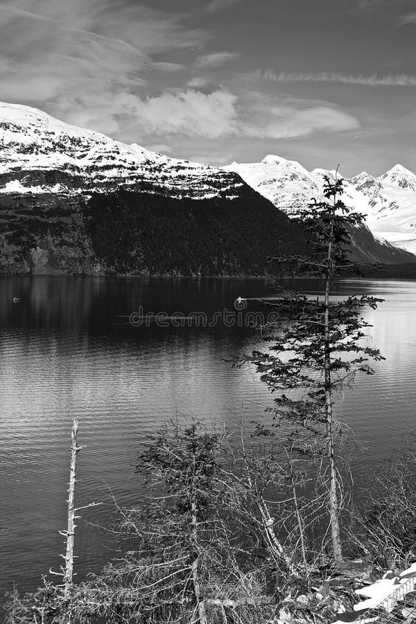 Alaskische Küste lizenzfreies stockbild