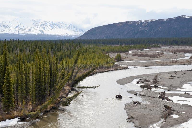 Alaskische Landschaft lizenzfreies stockfoto