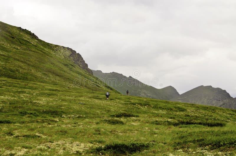 Alaskische Wanderer stockfotos