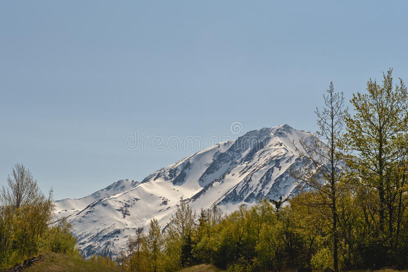 Alaskischer Berg stockfoto