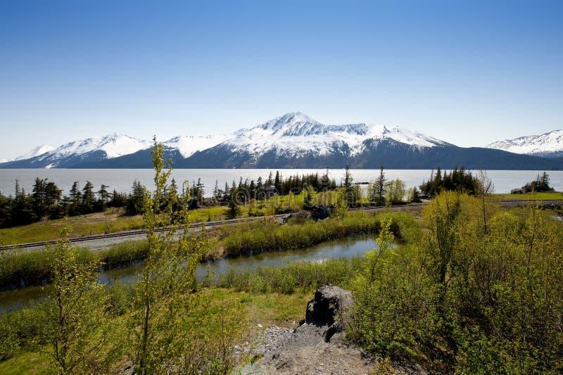 Alaskischer Fjord und Berge stockfotos