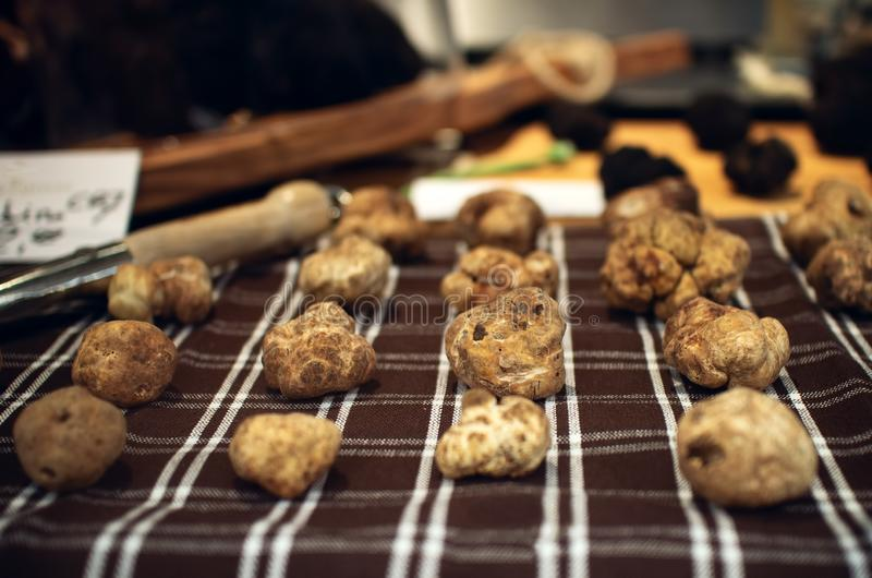 Alba белые трюфеля на стойле рынка, Италии стоковое изображение rf