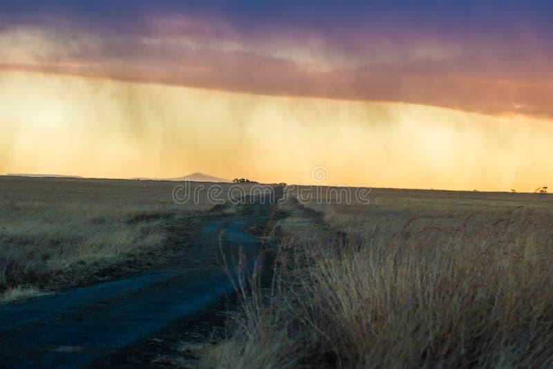 Alba africana Colourful nel Sudafrica immagine stock libera da diritti