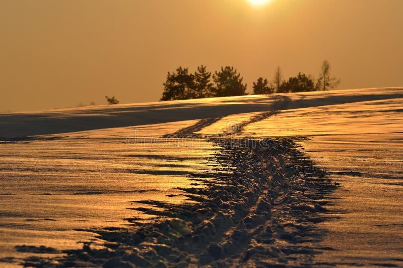 Alba arancio nell'inverno Neve arancione immagini stock