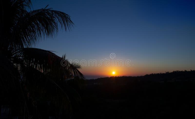 Alba ardente su paesaggio tropicale con la palma immagine stock libera da diritti