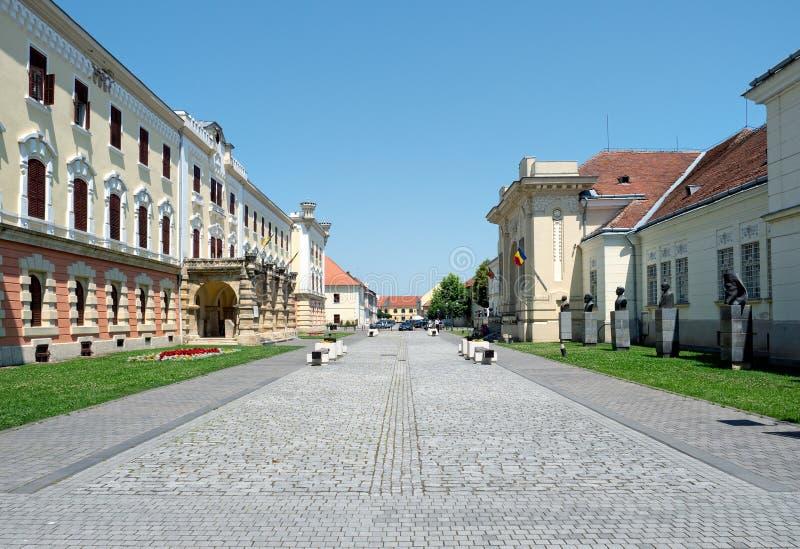 Alba Carolina citadell, Alba Iulia, Rumänien fotografering för bildbyråer