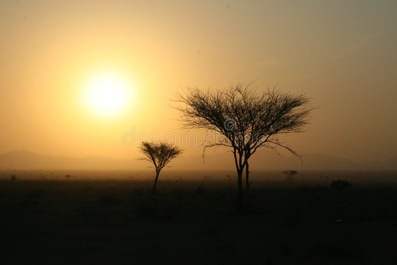 Alba del deserto fotografia stock