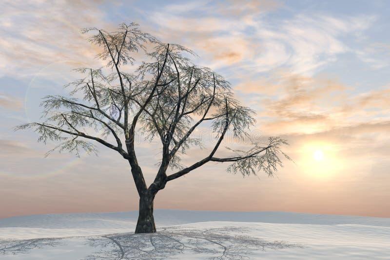 Download Alba Del Pastello Dell'albero Di Inverno Illustrazione di Stock - Illustrazione di nubi, pastello: 7319459