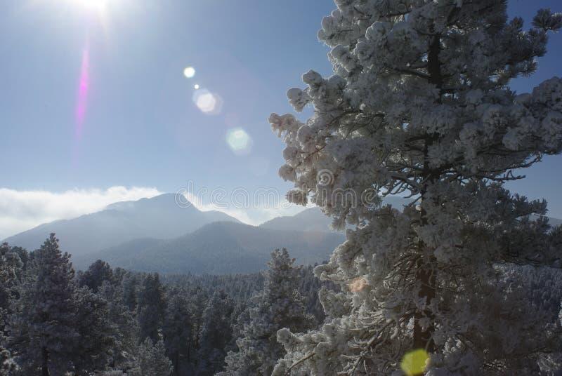 Alba 6 della montagna fotografia stock