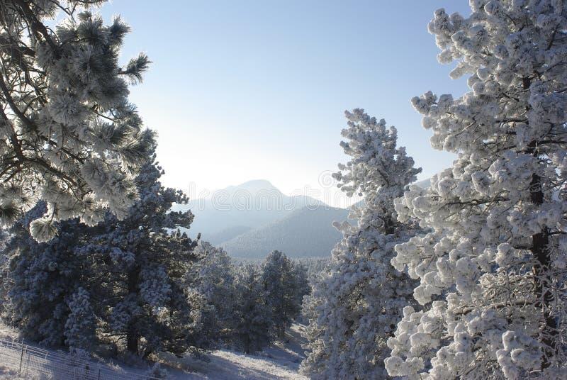 Alba 3 della montagna fotografia stock libera da diritti