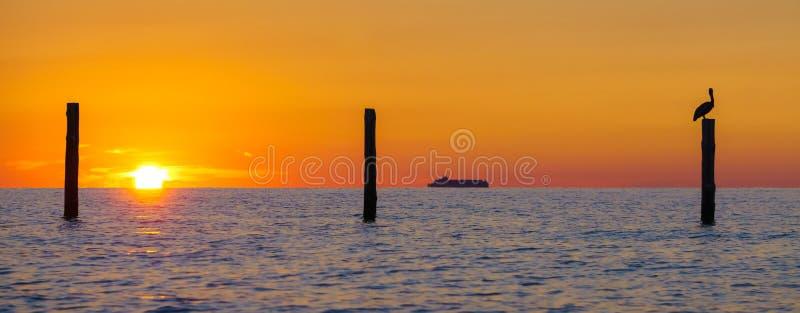 Alba della siluetta sulla baia di Chesapeake fotografia stock libera da diritti