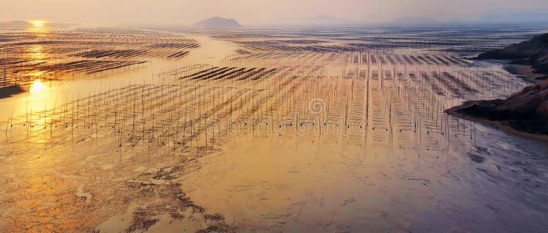 Alba della spiaggia del Fujian Xiapu, Cina fotografia stock libera da diritti