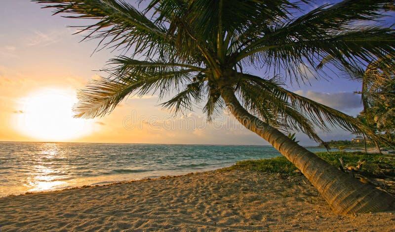 Alba della spiaggia del Maya del Riviera immagini stock libere da diritti