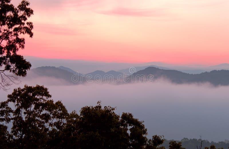 Alba della strada panoramica delle colline pedemontana, sosta nazionale delle grandi montagne di Smokey, TN immagine stock