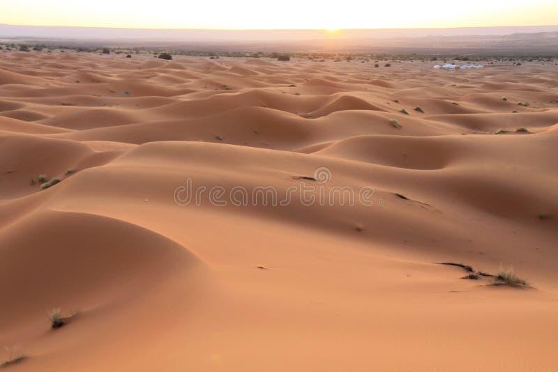 Alba in deserto del Sahara Marocco, Nord Africa fotografie stock libere da diritti