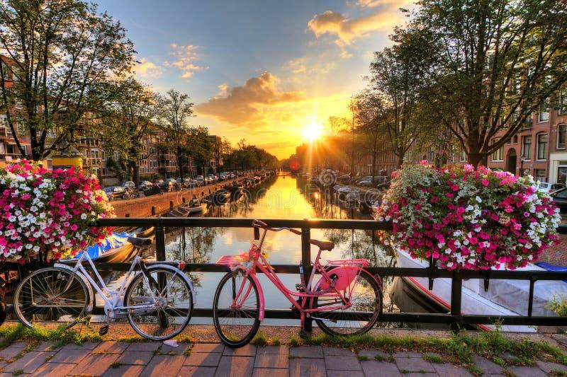 Alba di estate di Amsterdam immagine stock libera da diritti