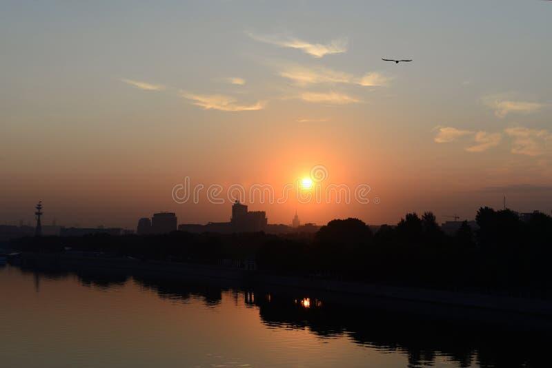 Alba di estate sopra la città fotografia stock libera da diritti