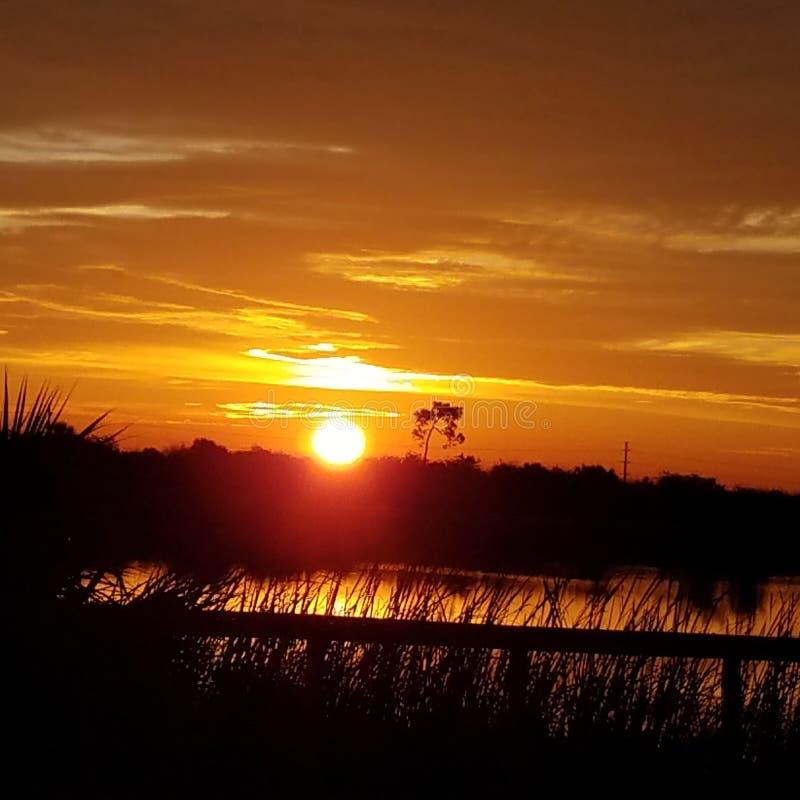 Alba di Florida sopra le zone umide protette immagine stock libera da diritti