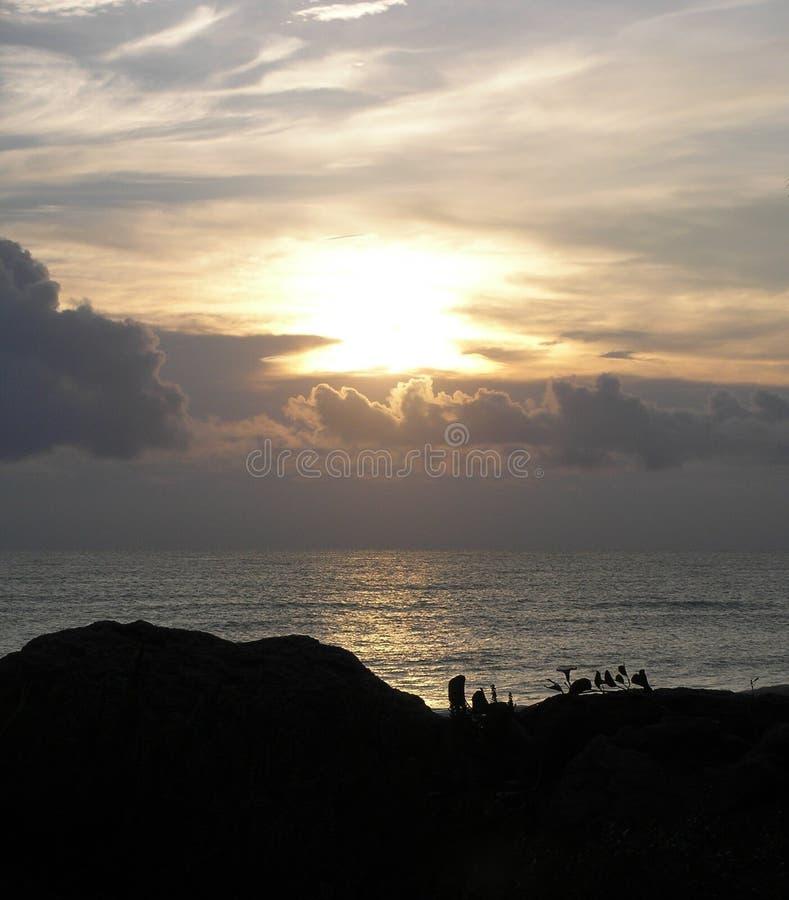 Download Alba di Oceanside immagine stock. Immagine di regolazione - 218315