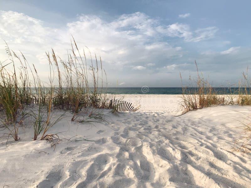 Alba di primo mattino alla spiaggia incontaminata di Florida fotografie stock libere da diritti