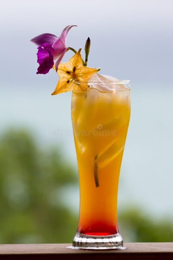 Alba di tequila servita all'aperto fotografia stock