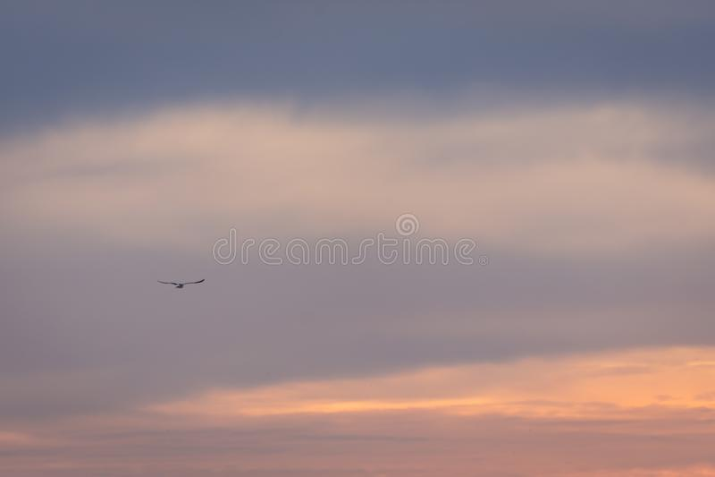 Alba di tramonto del cielo di colore soltanto Immagine variopinta fotografie stock