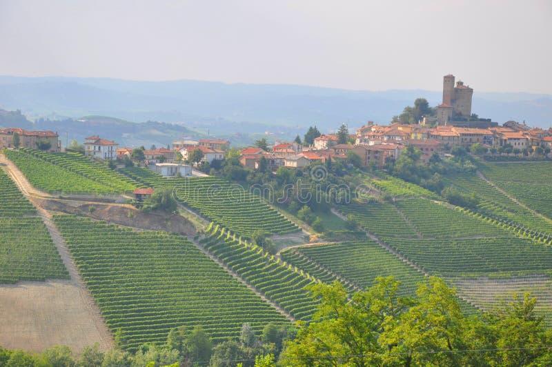 Alba dorp en winelands serralunga royalty-vrije stock foto
