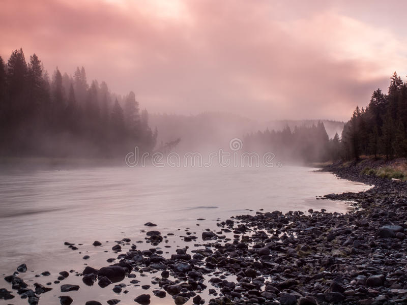 Alba il fiume Yellowstone, Yellowstone NP, U.S.A. fotografia stock