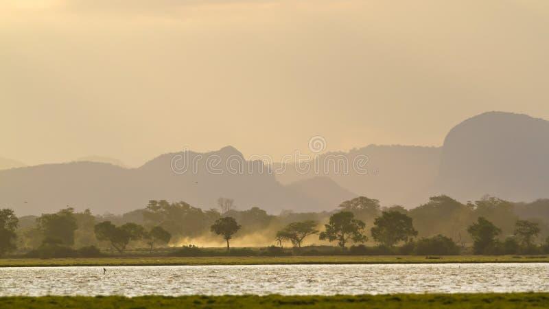 Alba in lagoo della baia di Arugam, Sri Lanka immagine stock libera da diritti