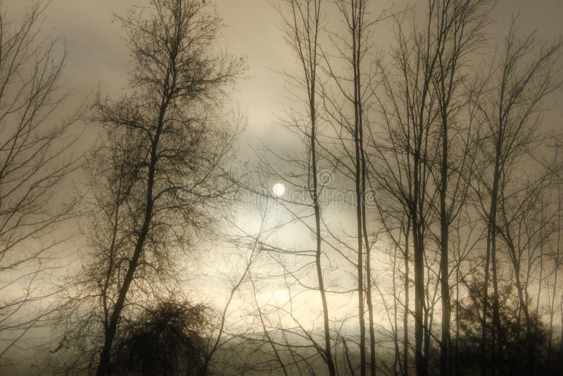 Alba lunatica New Hampshire immagini stock libere da diritti